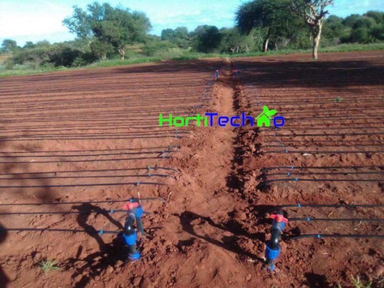 Drip irrigation Company In Kenya