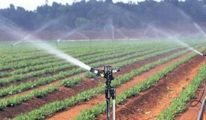 Irrigation materials