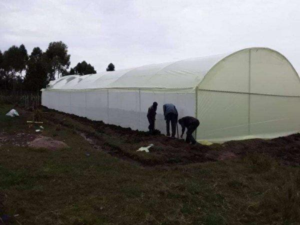 Metallic greenhouses